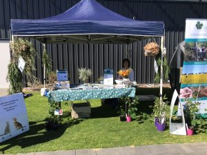 Western ringtail possum conservation at the Dolphin Festival