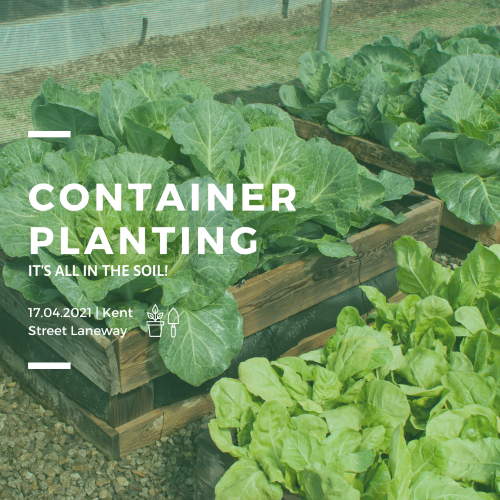 Geocatch: Container Planting, it's all in the soil!